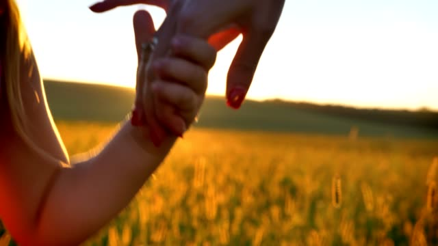 Mother ia walking with her daughter in field in summer, holding hands, family concept