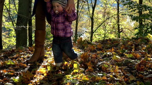 Mother teach baby child walking in beautiful autumn forest. video