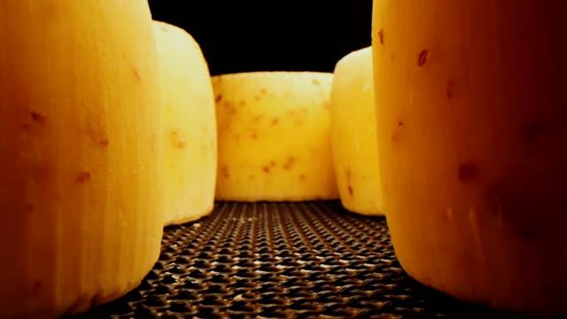 motion between cheese heads on dark metal shelf closeup