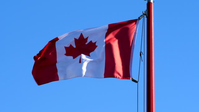 Motion of Canadian flag flying on flagpoles in a blue sky video