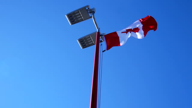 Motion of Canadian flag flying on flagpoles with blur building background video