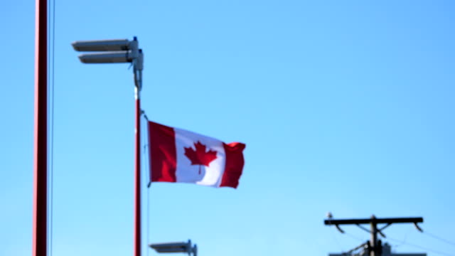 Motion of de-focus to focus of Canadian flag flying on flagpoles video