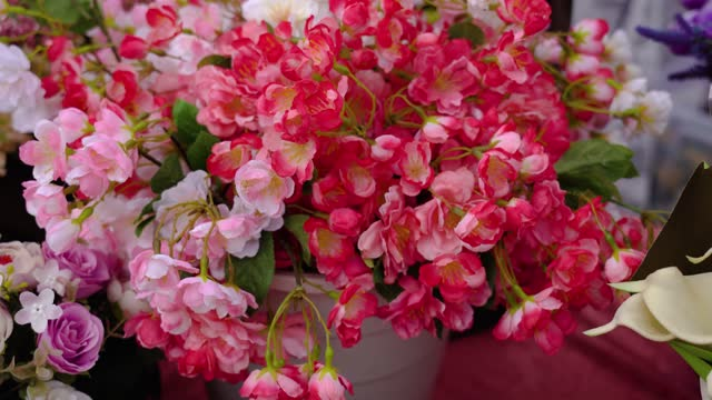 Motion over picturesque red begonias in large pot plant