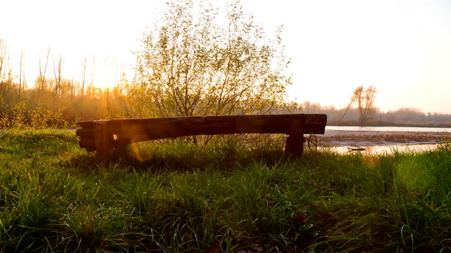 HD Motion Time-Lapse: Bench At The River video