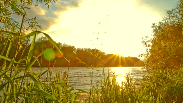 HD Motion Time-Lapse: River At Sunset HD1080p: Motion Control Time Lapse shot of a cloudscape over a river at sunset. sunset to night time lapse stock videos & royalty-free footage
