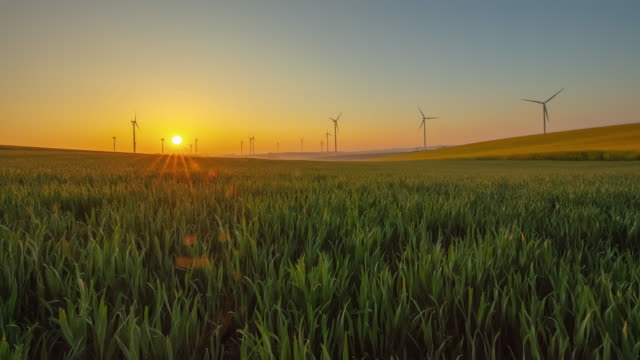Motion Time-Lapse shot of wind turbines spinning in the countryside at sunrise
