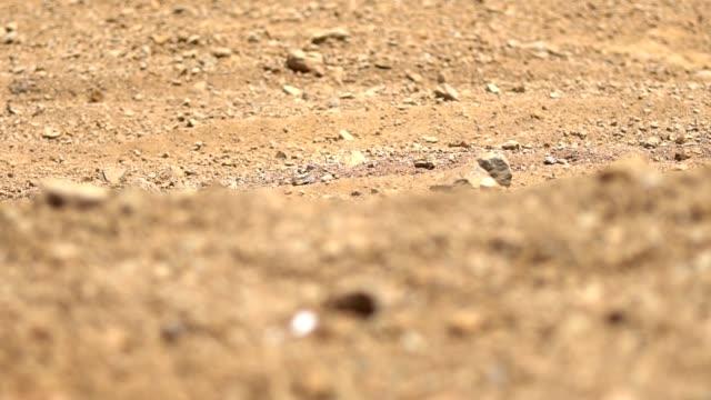 motocross race close up detail - bike tire tracks video stock e b–roll