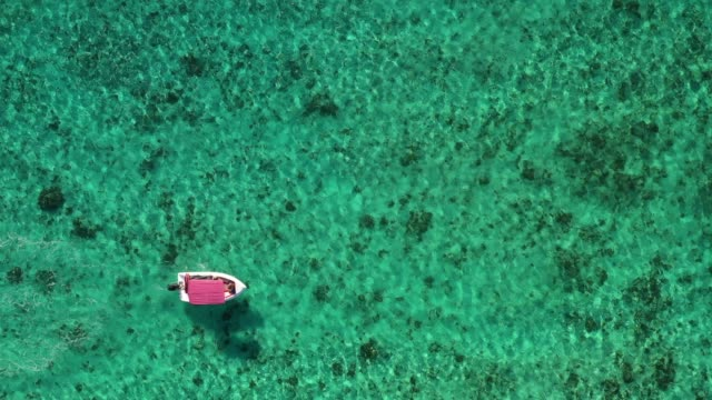 motorboat in the very clean water out of mauritius coastline - isole mauritius video stock e b–roll