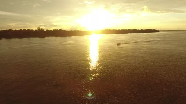 Motorboat navigating in the Amazon river video