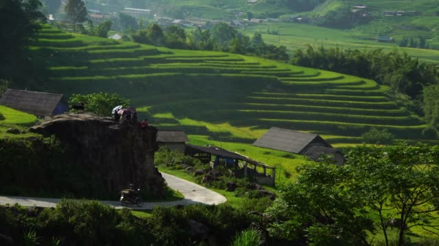 motorcycle driving thru scenic rice terrace fields in Sapa, Vietnam Asia Scenic view of rice paddy field terraces hills in Sapa, Vietnam, Asia southeast stock videos & royalty-free footage