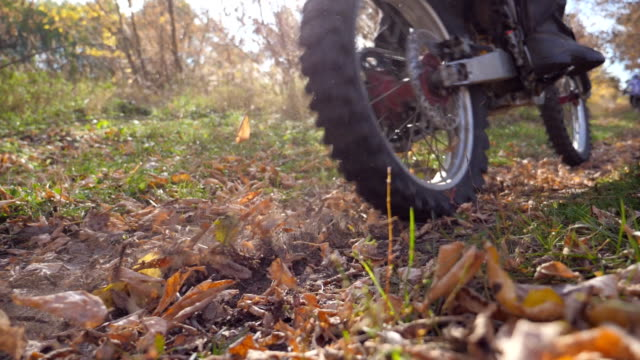 motorcyclist rides on trail in autumn forest. motorcycle drives along wood path kicking up colorful autumnal fallen leaves. biker trains in nature. extreme sport concept. slow motion - freestyle motocross video stock e b–roll