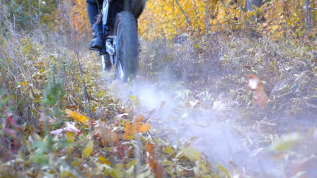 motorcyclists rides on trail in autumn forest. motorcycles crosses along wood path kicking up dry fallen leaves. bikers train in nature. active rest outdoor. back view slow motion - freestyle motocross video stock e b–roll
