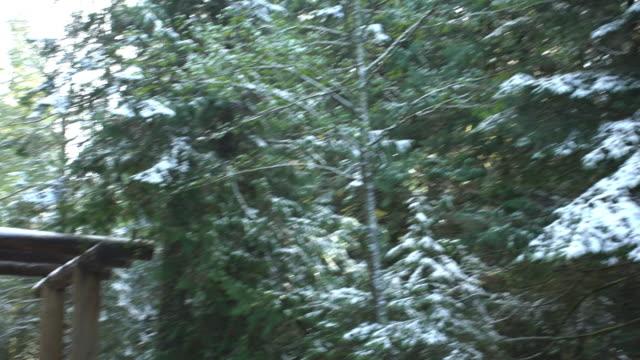 Mount Rainier National Park Entrance
