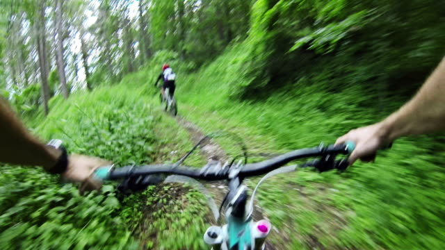 Mountain Bike Video: a Single Track in the Forest video