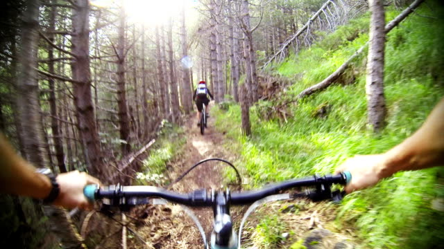 stockvideo's en b-roll-footage met mountain bike video: a single track in the forest - gopro