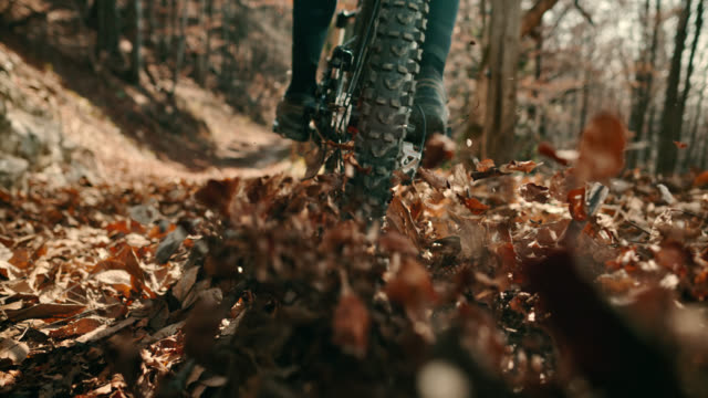 speed ramp mountain biker causing leaves to fly into the air on the forest trail - bike tire tracks video stock e b–roll