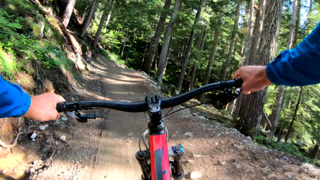 Mountain biker descends forest trail with speed