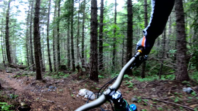 mountain biker point of view descending rugged west coast trail - andare in mountain bike video stock e b–roll