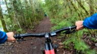 istock Mountain biker rides along forested path 1221903477