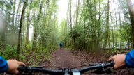 istock Mountain biker rides along forested path 1221904606