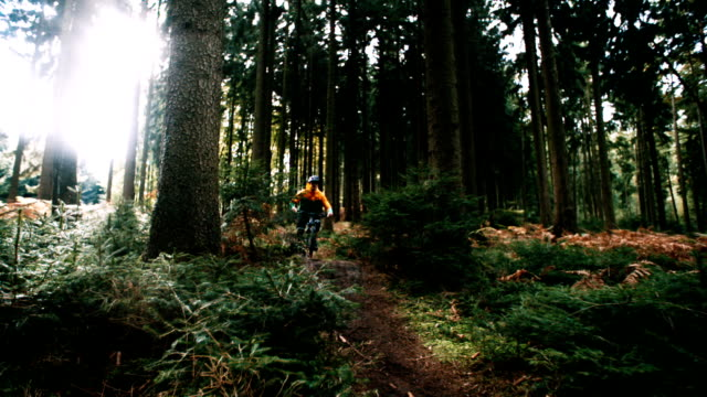 Mountain biker rides over ramp in slow motion in woods video