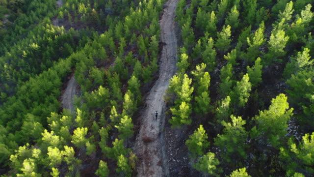 mountain biker riding on a dirt road aerial view photography - percorso per bicicletta video stock e b–roll
