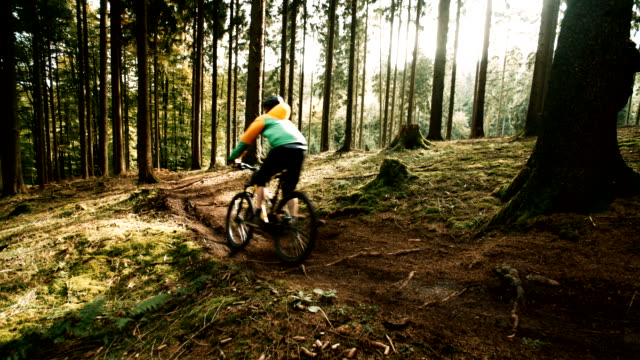 Mountain Biker Riding On Forest Track in slow motion video