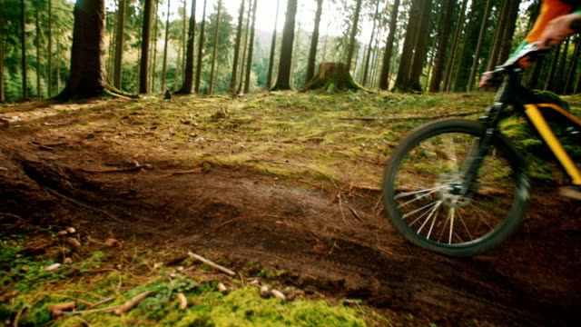 Mountain Biker Riding On Forest Trail in slow motion video
