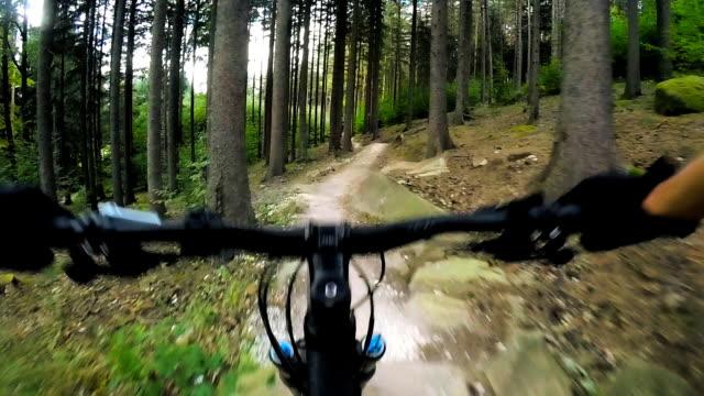 緑の森、pov クリップ 4 個で 1 つのトラックに乗ってマウンテン バイク サイクリング - エクストリームスポーツ点の映像素材/bロール