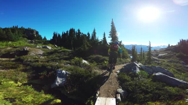 mountain biker riding through alpine in whistler. - andare in mountain bike video stock e b–roll