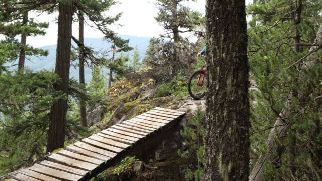 Mountain biker traverses forest trail with speed