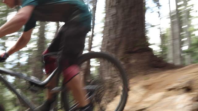 Mountain biker traversing trail through forest