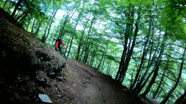 vídeos de stock, filmes e b-roll de ciclistas de montanha subir a ladeira no floresta verde brilhante - camiseta preta