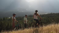 istock Mountain bikers converse on grassy ridge crest above valley 1269721204