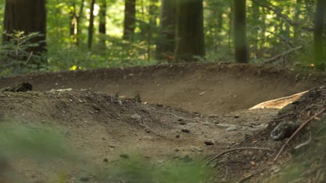 mountainbiker auf einem bergweg durch den wald - eskapismus stock-videos und b-roll-filmmaterial
