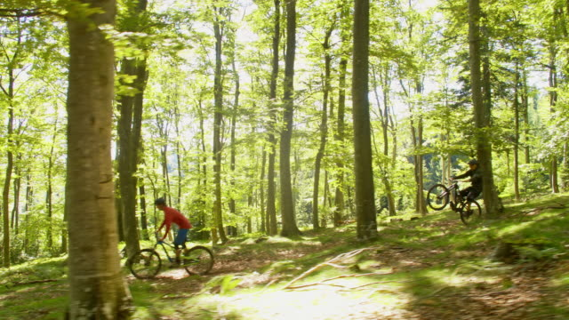 WS Mountain bikers riding downhill in forest video