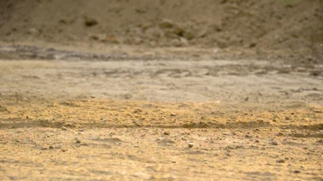 Mountain bikers skidding through dust video