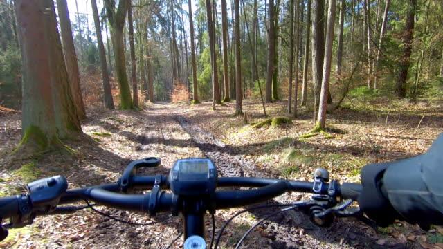 Mountainbiken im Sonnigen Winterwald – Video
