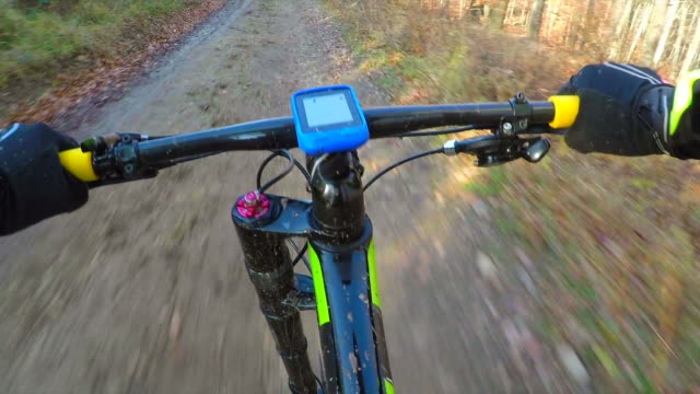 Mountain biking through a forest in autumn. video