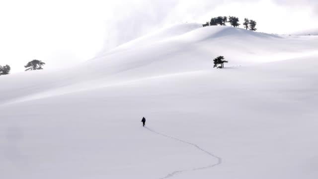 stockvideo's en b-roll-footage met bergbeklimmer is wandelen in het bos in de winter - sneeuwkap
