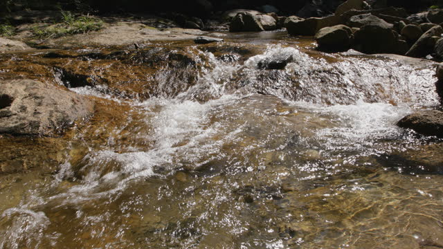 Mountain creek at late summer video