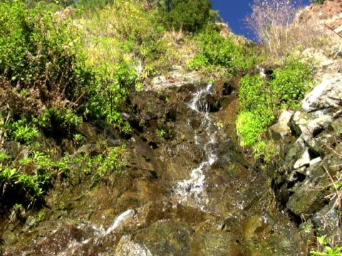 vidéos et rushes de pal : ruisseau de montagne - durée du plan séquence