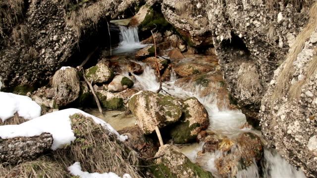 Mountain creek video