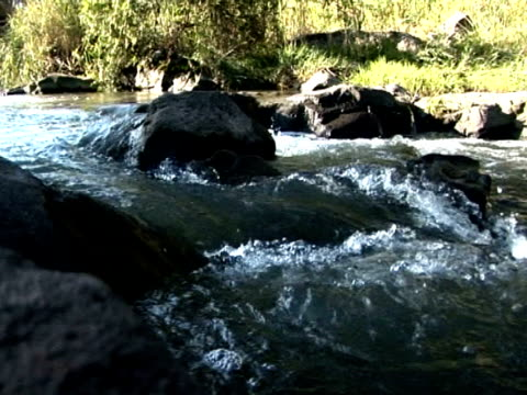stockvideo's en b-roll-footage met mountain creek - natuurgrond