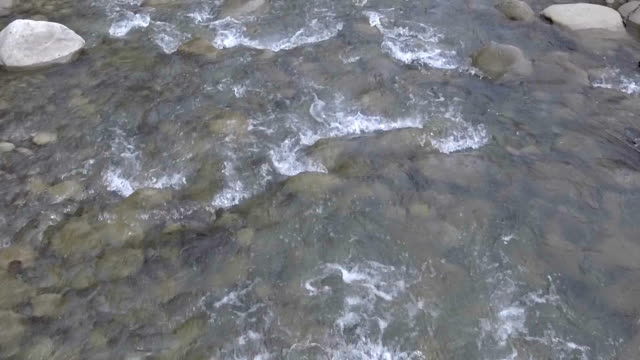 Mountain creek water flowing rapidly river cascade video