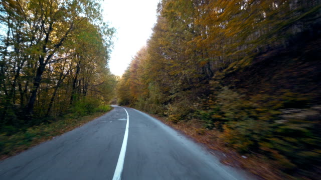 Mountain Drive. POV from the drivers perspective through a winding mountain road with an autumn trees lined highway with clear blue skies and burst of sun light video