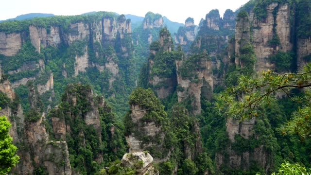 Mountain Formations In Form High Rocky Stone Pillars In Zhangjiajie Forest Park