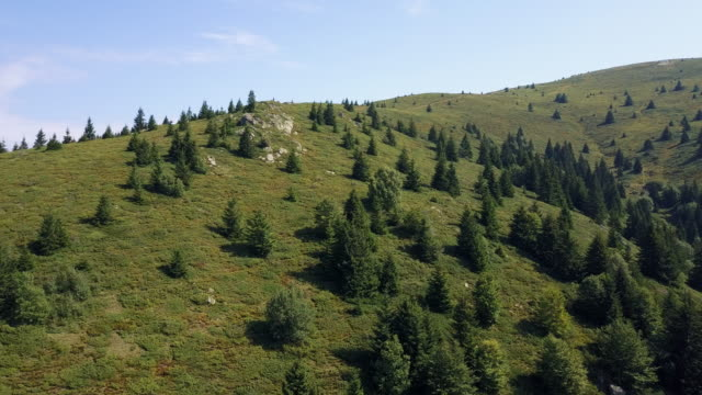stockvideo's en b-roll-footage met berg in de zomer - duurzaam toerisme
