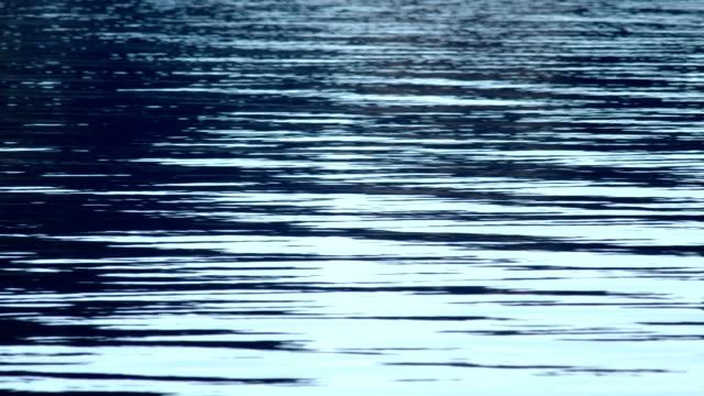 vídeos y material grabado en eventos de stock de lago de montaña. cu de un hermoso lago con pequeñas olas que se elevan en el agua. - memorial day