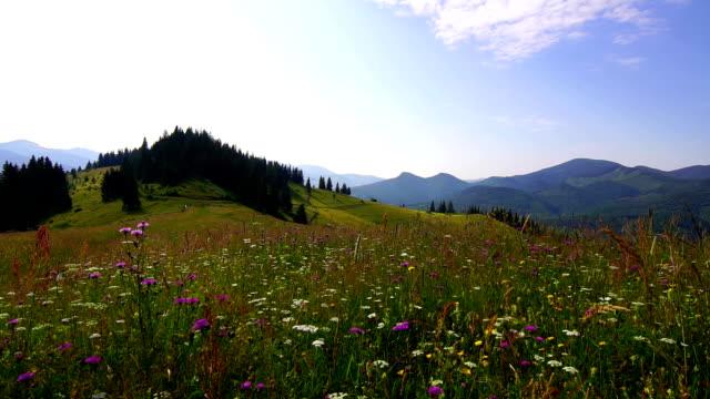 Mountain Landscape video
